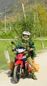 bike with garden